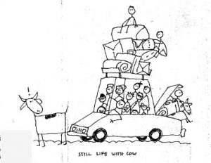 Car and Cow